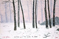 Peter Brook - Stopping in the Woods to Look